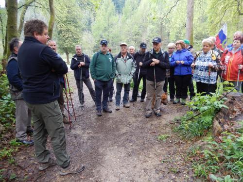 Gozdar je opisal gozd Panovec v katerem se nahaja 102 različni vrsti dreves