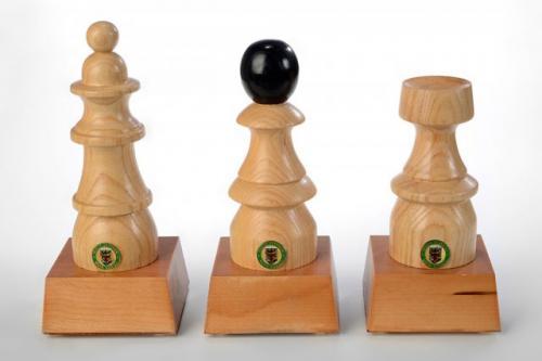 Pokali za tekmovanje v šahu